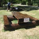 Прясно лакирана пейка на Дендрариума